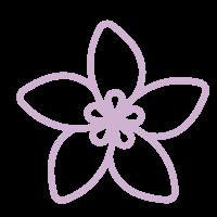 icones-jasmin